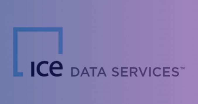 ICE Data Services logo